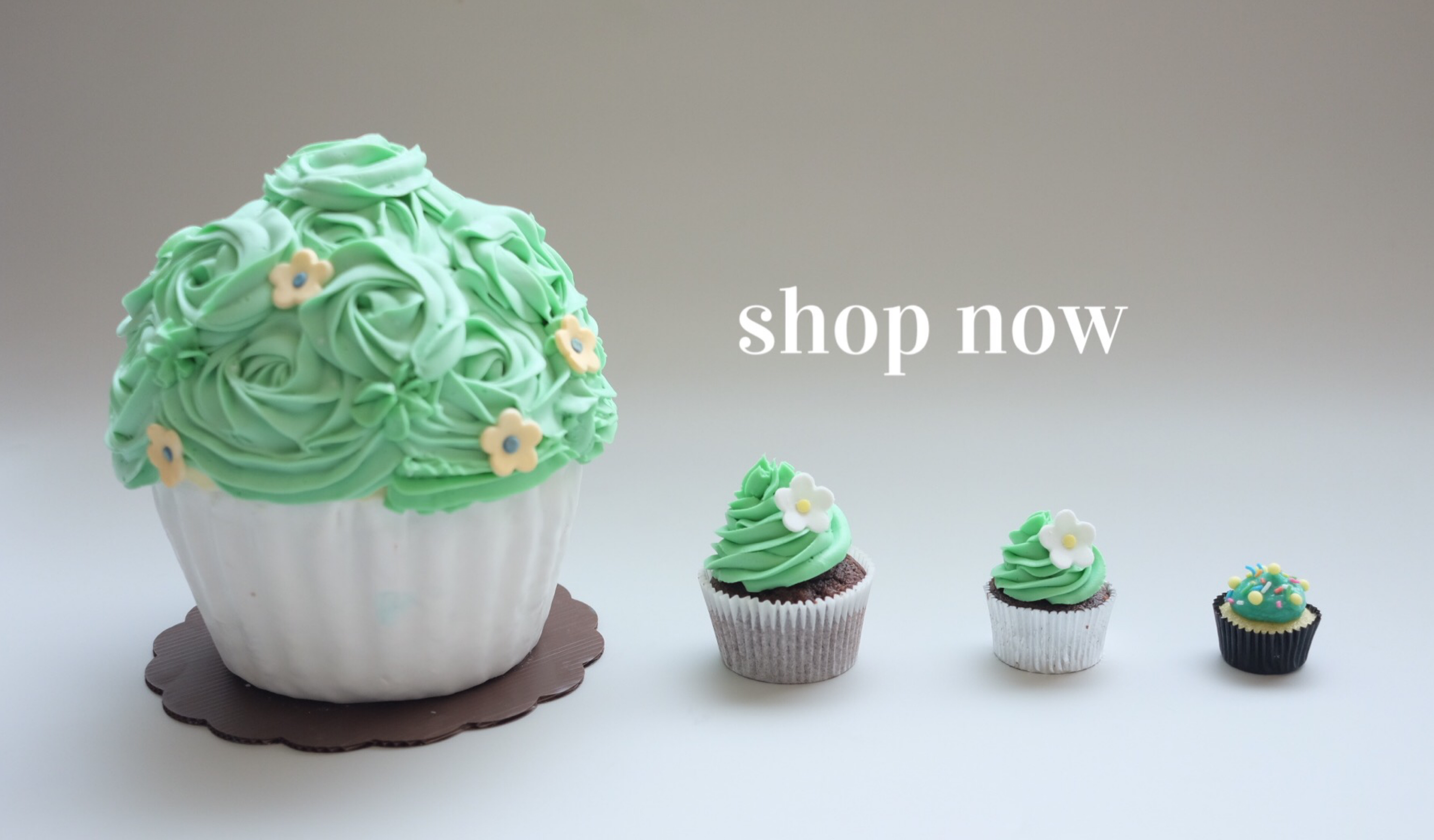 get to know our cupcakes
